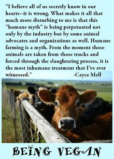 Cayce Mell. There's no need to exploit and harm someone for your own pleasure or profit. ALL animals -- human AND nonhuman -- have the inherent rights not to be treated as someone's property or used/exploited for someone else's interests. We rob others of those rights and steal what isn't ours. We harm those who mean us no harm. If you wouldn't want to be treated like that, then don't do it to someone else! www.vegankit.com & www.humanemyth.org & www.peacefulprairie.org/humane-myth01.html
