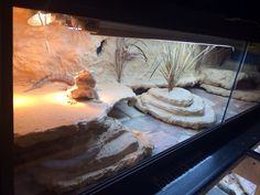 DIY reptile background made with styrofoam, expanding foam, and grout