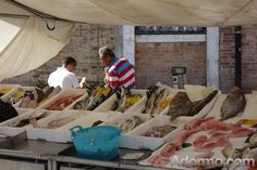 Fish stall in Campo Santa Margherita