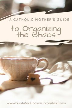 "A Catholic Mother's Guide to Organizing the Chaos. ""How to organize your home and bring peace to your soul"""