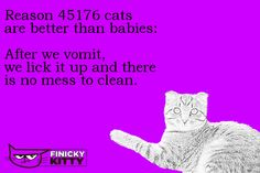Reason 45176 cats are better than babies: After we vomit, we lick it up and there is no mess to clean. Cool Cats, Good Things, Cleaning, Babies, Memes, Babys, Home Cleaning, Baby Baby, Meme