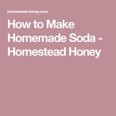 Light, sweet, fizzy, and refreshing, homemade soda is the perfect ending to a hot summer day. This post will teach you how to make homemade soda at home. Making Homemade Pizza, Homemade Dog Food, How To Make Homemade, Homemade Butter, Homemade Hummingbird Feeder, Homemade Solar Panels, Homemade Tamales, Homemade Ravioli, Deer Food