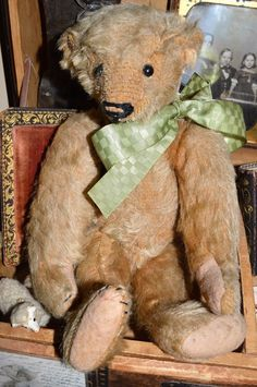 Early 1900s Antique Steiff Teddy Bear Cabinet Size 11 inches Mohair Old   eBay