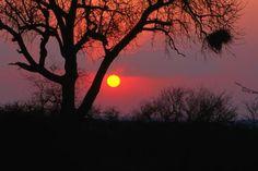 Lonely Planet, National Park Posters, National Parks, Camping 3, African Sunset, Africa Destinations, Best Sunset, Kruger National Park, Beach Landscape
