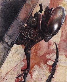 Alien Vs Predator, Predator Movie, Predator Alien, Alien 1979, Alien Film, Alien Art, Science Fiction, Xenomorph, Christopher Lovell