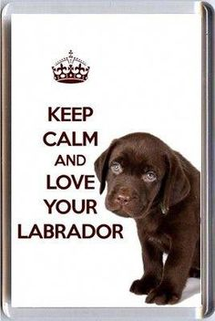 KEEP CLAM and LOVE DOBERMAN poster Design Magnet Fridge Collectible Home