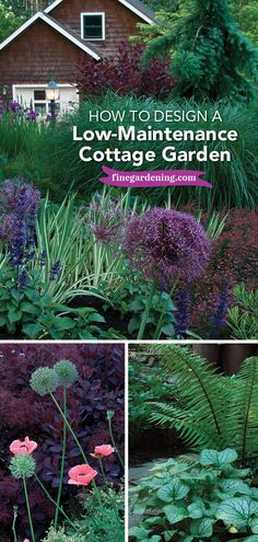 Create a Modern Cottage Garden: Learn how to create a modern cottage garden with these design tips from Fine Gardening.