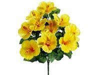 Yellow Hibiscus Bush FBH168-YE.jpg