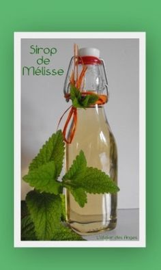 Sirop de Mélisse - Expolore the best and the special ideas about Liqueurs Types Of Cocktails, Healthy Cocktails, Wine Cocktails, Refreshing Cocktails, Alcoholic Drinks, Smoothies, Cocktail Mix, Lemon Balm, How To Cook Quinoa