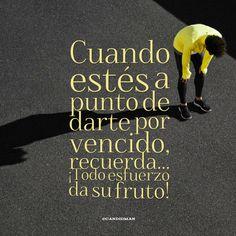 """Cuando estés a punto de darte por vencido, recuerda""... ¡Todo esfuerzo da su fruto! @candidman #Frases #Motivacion"