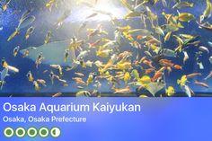 https://www.tripadvisor.com/Attraction_Review-g298566-d320969-Reviews-Osaka_Aquarium_Kaiyukan-Osaka_Osaka_Prefecture_Kinki.html?m=19904