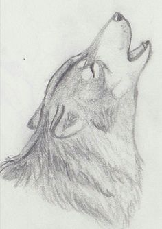 Drawings of a wolf howling wolf drawing wolf drawings easy cute . Art Drawings Sketches Simple, Animal Sketches, Pencil Art Drawings, Cute Drawings, Easy But Cool Drawings, Easy Drawings Of Animals, Cool Wolf Drawings, Amazing Drawings, Bird Drawings