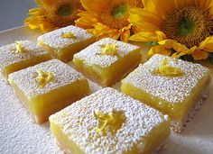 Lemon Bars in the Co