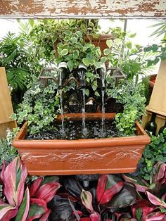 Jill's World of Research, Reaction and Millinery: Biltmore's Gardens - cool wine bottle fountain!