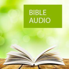 Écouter ou télécharger les 24 chapitres du livre 2 Samuel de la Bible audio.