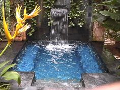 Great small swimming pools ideas (10)