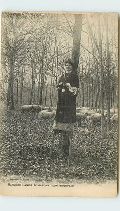LANDES bergère échasses. Spinning shepherdess on stilts, France. Habetrot Collection.