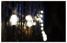 luces para exterior   Deco mesa principal con botellas y flores #weddingdeco #ambientación #boda #decoboda #luces #minikermesse #dinuccipaisajismoeventos