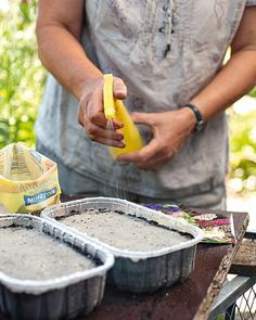 Erde anfeuchten Gießen: Die Aussaat leicht andrücken, mit etwas Vogelsand abdecken und kräftig anfeuchten, ohne die Samen wegzuspülen.