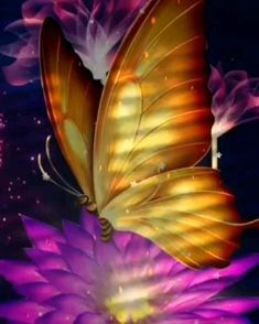Beautiful Love Pictures, Butterfly Effect, Beautiful Fairies, Plant Leaves, Meet, Animation, Videos, Plants, Amazing Pictures