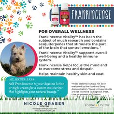 using frankincense essential oil blend on dogs