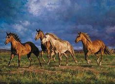 Racing the Sun-Horses by Chris Cummings  Large Framed Racing the Sun Canvas  $149.95
