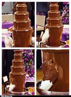 Funny pictures about Parrot finds a chocolate fountain. Oh, and cool pics about Parrot finds a chocolate fountain. Also, Parrot finds a chocolate fountain. Funny Animal Pictures, Funny Animals, Cute Animals, Funny Animal Humor, Stupid Animals, Fail Pictures, Haha Funny, Stupid Funny, Funny Memes