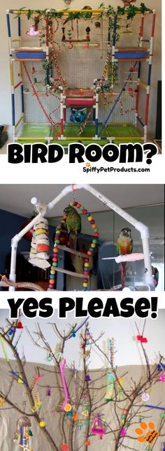 Bird Room Ideas Are Addictive. You Have Been Warned!-Bird Room Ideas Are Addictive… You Have Been Warned! – Spiffy Pet Products Pet Birds Need Table Top Perches and Playgyms – Bird Room Ideas For Parrots, Parakeets & Cockatiels - Diy Bird Cage, Bird Cage Stand, Bird Cages, Bird Feeders, Birds For Kids, Animals For Kids, Best Pet Birds, Diy Bird Toys, Diy Toys