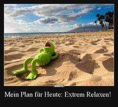 Mein Plan für Heute: Extrem Relaxen! | Lustige Bilder, Sprüche, Witze, echt lustig