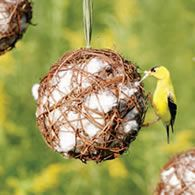 "Nesting Materials. Love them in the ""vine"" ball."