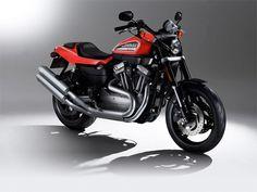 Harley-Davidson XR 1200, gorgeous