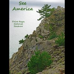 Point Reyes National Seashore 2 by Anthony Chiffolo  #SeeAmerica