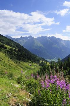 Mullitztal / Lasoerling / Virgental