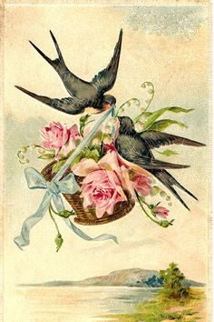 Vintage Birds, Vintage Postcards, Vintage Images, Victorian Art, Bird Drawings, Bird Pictures, Card Tags, Wall Art Prints, Illustration Art