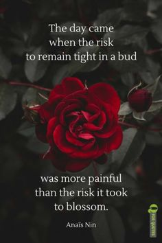 Words Of Wisdom Quotes, Hurt Quotes, Real Life Quotes, Wise Quotes, Qoutes, Soul Quotes, Poetry Quotes, Deep Love Poems, Granted Quotes
