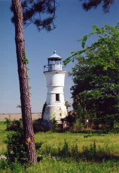Grasses Were Witness To How Sturdy The Port Pontchartain Lighthouse Is ~ Built 1855
