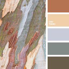 bark color, bog color, brown, design color selection, gray, gray-green, house color schemes, marsh, olive, Orange Color Palettes, pale gray, red-brown, shades of gray, wood color.