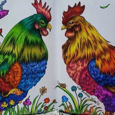 Beautiful roosters! By @vddeguzman  You create beauty with colors!