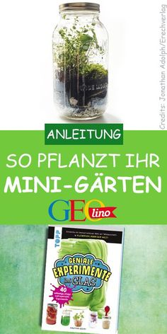 Mini-Garten anlegen We show you on GEOLINO.de how to grow plants in the glass & with book tip! The post Create a mini garden appeared first on Myzes.