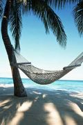 anywhere with a hammock!