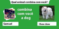 Qual animal combina com voc�?