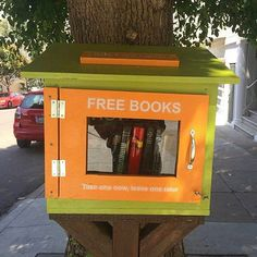 Under the tree's nook we found free books.  #sanfrancisco #bookrecommendations #reads #book #books #instabook #bookstagram #freebooks