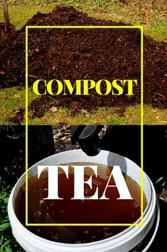 One of the best alternatives to chemical fertilizers is Compost Tea. It is even better than using traditional compost. A good compost tea recipe is neither complicated nor hard to make. Here is how simple it is Organic Fertilizer, Organic Gardening, Gardening Tips, Indoor Gardening, Garden Fertilizers, Vegetable Gardening, Urban Composting, Composting Toilet, Worm Composting