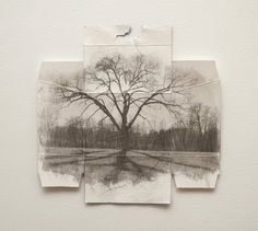 Tree Portrait Black and White Photograph by HolataHandmade on Etsy