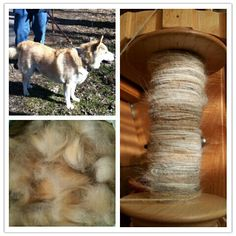 Dog Yarn Spinning Service by SpinningChien on Etsy, $5.00