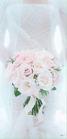 Soft & Pink