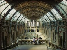 Natural History Museum, London, 2012. A must-see if you're in town. Photo: Rob Bentley #london #museum