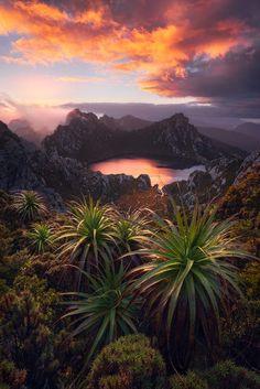 Lake Oberon, Western Arthurs, Tasmania by Dylan Gehlken
