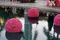 flower balls floating in a pool at a poolside wedding