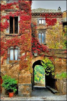 Autumn in Bagnoregio, Italy I could so live here......even in one room.....as long as there is a comfy chair to read in!